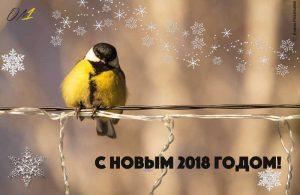 агентство маркетинга и рекламы в Новосибирске – цены, заказать услуги