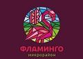 Микрорайон Фламинго, Новосибирск